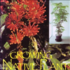 Growing Native Plants Indoors