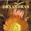 The Dryandras