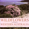 Wildflowers of Southern Western Australia