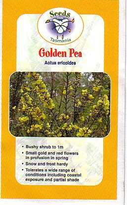 Aotus Ericoides Australian Native Plants Plants 800